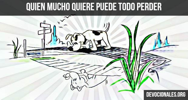 ilustraciones-el-perro-y-su-sombra-biblia