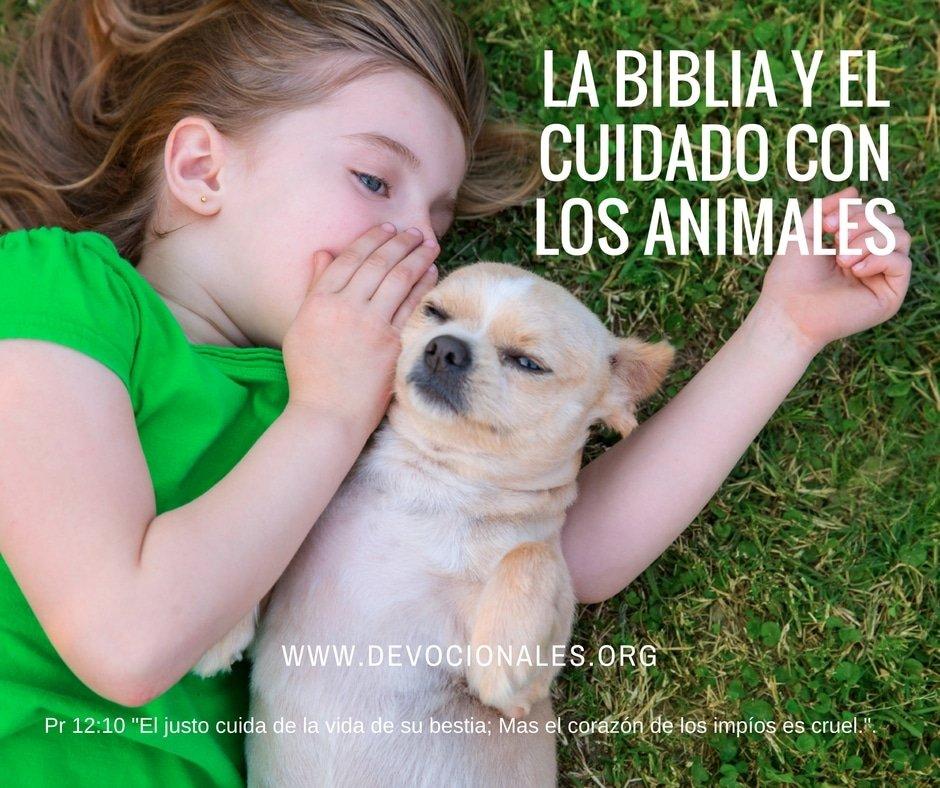 Biblia-cuidado-animales