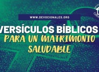 versiculos-biblicos-para-un-matrimonio-saludable-biblia