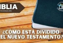 division-nuevo-testamento-biblia-libros-66-versiculos-27