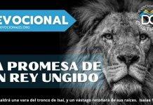 la-promesa-de-un-rey-ungido-biblia-versiculos-biblicos