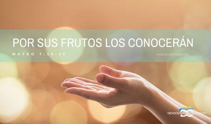 por-sus-frutos-los-conocereis-biblia