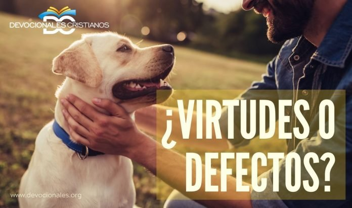 virtudes-defectos-biblia
