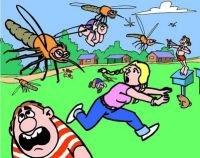 mensaje-a-la-conciencia-nube-de-mosquitos