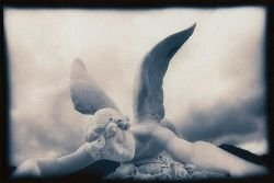 alas_rotas_angel