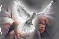 devocional-templo-espiritu-santo