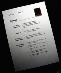 Curriculum CV Vitae