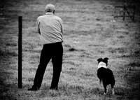 Hombre entrenando su perro