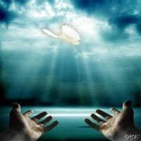 manos al cielo jesus