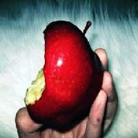 la-tentacion-biblia-manzana
