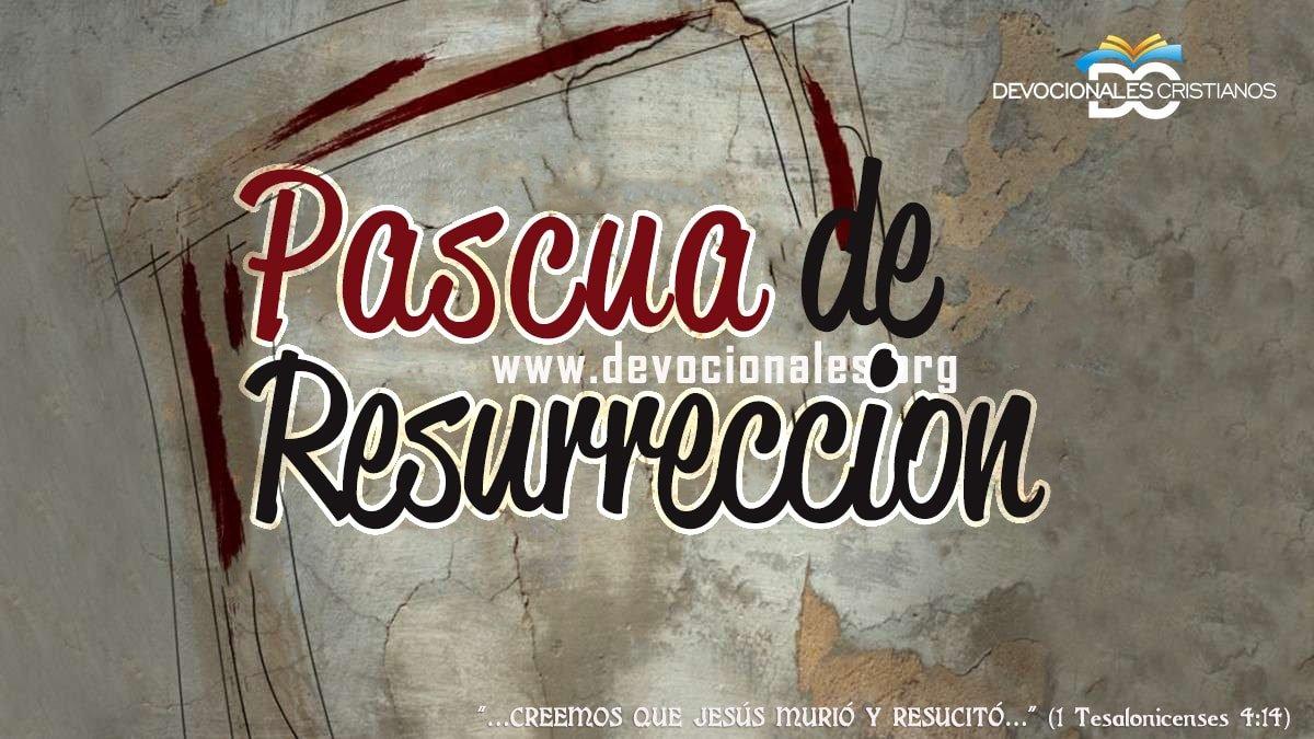 La Pascua De Resurrección La Resurrección De Cristo Y La Tuya