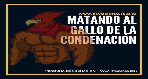 gallo-condenacion-biblia
