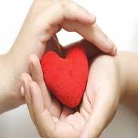 corazones-y-manos-biblia