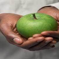 fruto-en-la-biblia