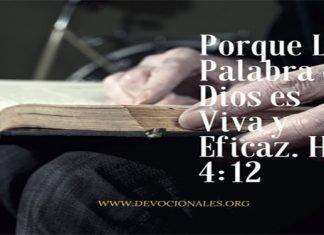Porque La Palabra de Dios es Viva y Eficaz