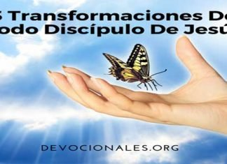 3 Transformaciones De Todo Discípulo De Jesús