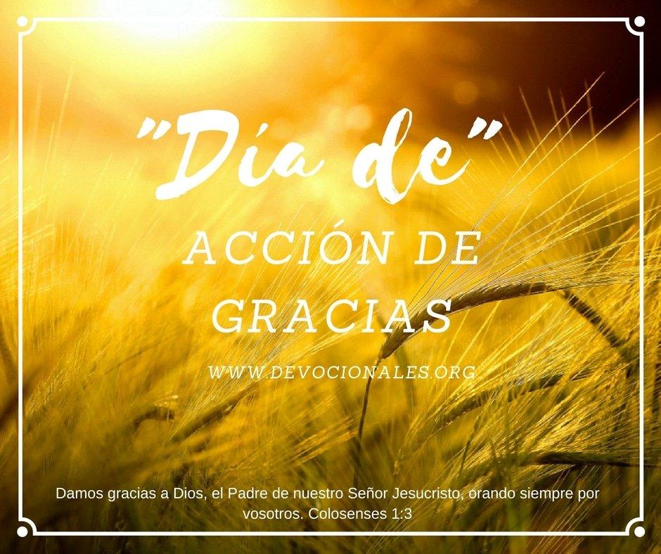 dia-accion-de-gracias-Biblia