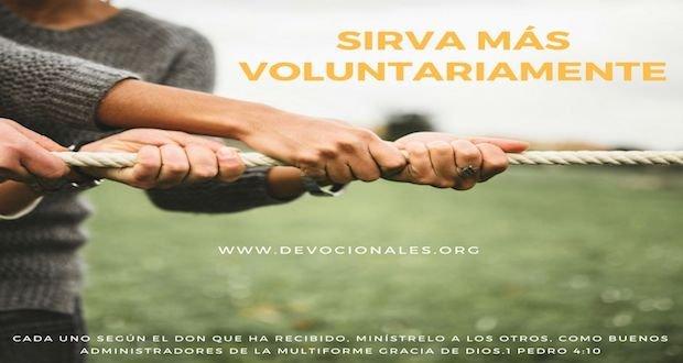 biblia-servicio-voluntario