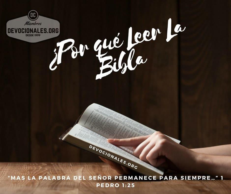 leer-estudiar-biblia