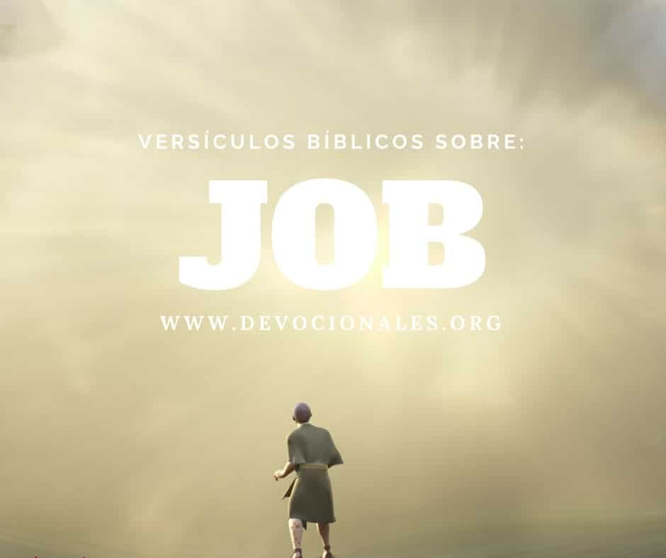 versiculos-biblicos-Job-Biblia