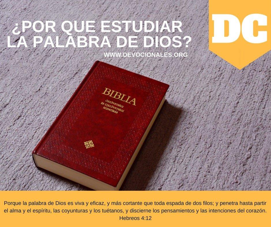 estudiar-palabra-Dios