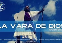 la-vara-de-moises-biblia-versiculos-biblicos
