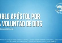 Pablo-apostol-por-la-voluntad-de-Dios-biblia-versiculos