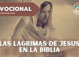 Jesus-lloro-las-lagrimas-biblia-versiculos-biblicos