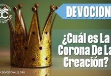 cual-es-la-corona-de-la-creacion-biblia-versiculos-biblicos